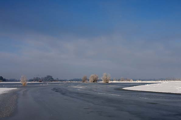 Foto van de Uiterwaarden van de IJssel bij Deventer