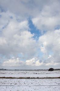 Foto van de Polder Groot en klein Oud-Aa