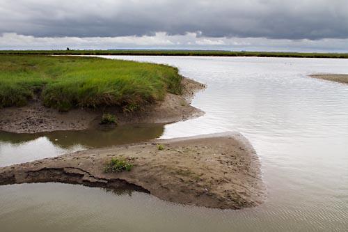 Foto van Het Verdronken Land van Saeftinghe