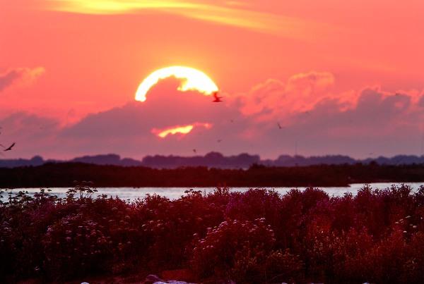 Foto van een zonsondergang, de Kreupel, IJsselmeer.