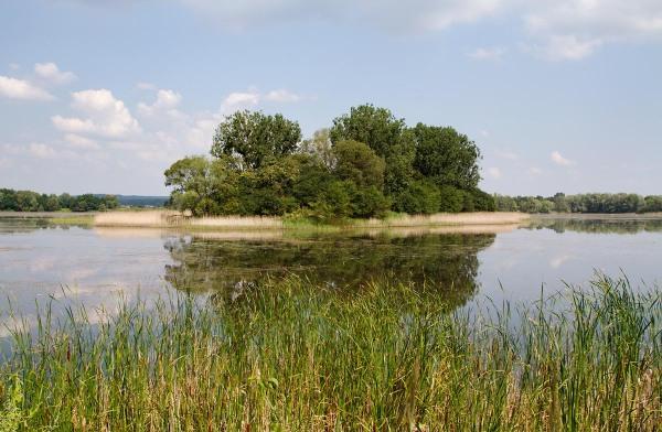 Foto van natuurgebied Stawy Milickie.