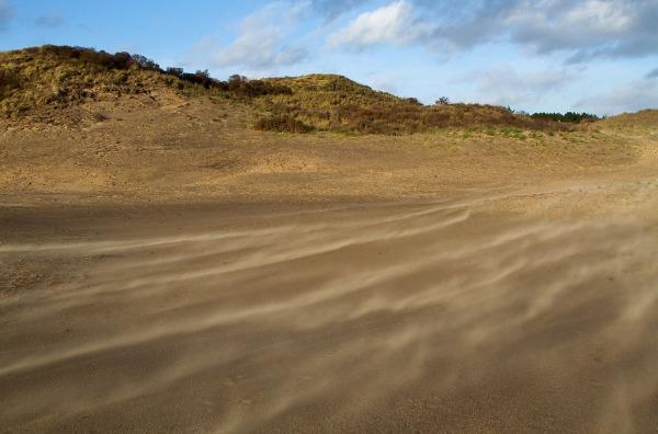 Foto van stuifzand op het Kraansvlak in Nationaal Park Zuid-Kennemerland.