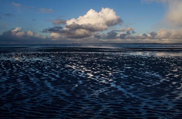 Foto van natuurgebied de Kwade Hoek