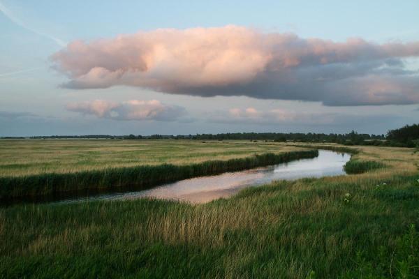 Foto van Nationaal Park Lauwersmeer