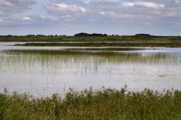 Foto van natuurgebied Zuvintas, Litouwen
