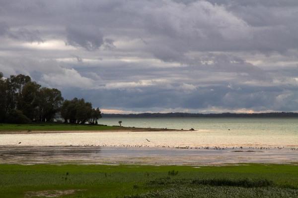Foto van Lac du Der, Frankrijk