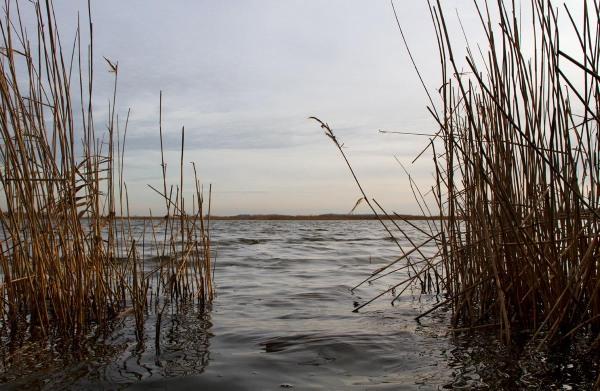 Foto van de Ezumakeeg, Lauwersmeer