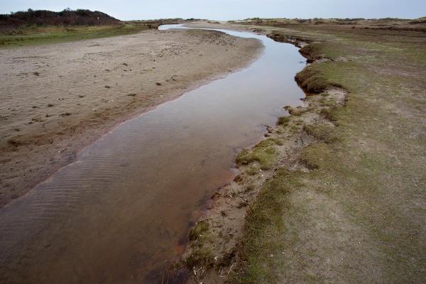 Foto van natuurgebied Kwade Hoek, Goeree-Overflakkee