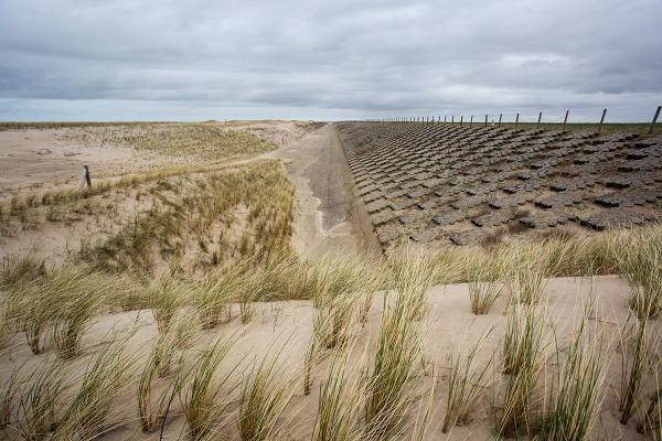 Foto van nieuwe duinen, Hondsbossche Zeewering, Petten