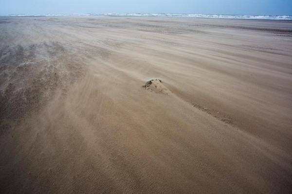 Foto van het nieuwe strand , Hondsbossche Zeewering, Petten