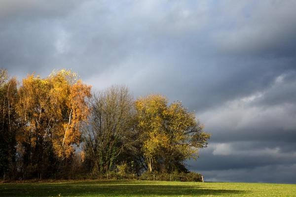 Foto van het Gerendal, Schin op Geul, Limburg