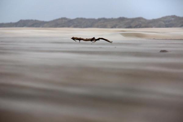Foto van het Noordzeestrand, Ameland