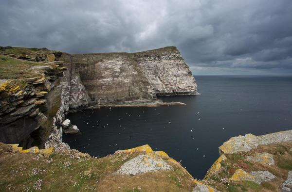 Foto van de Noup of Noss, Shetland