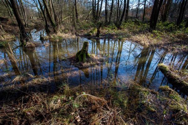 Foto van het Leudal, Limburg