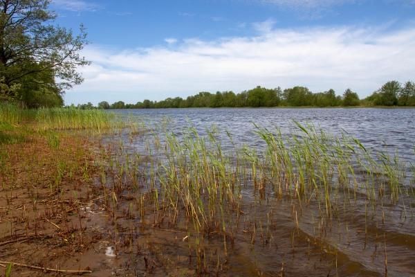 Foto van de Atmata, Nemunas delta, Litouwen
