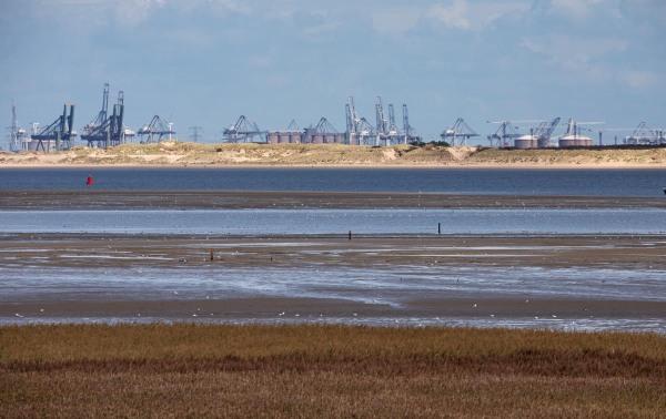Foto van de Maasvlakte