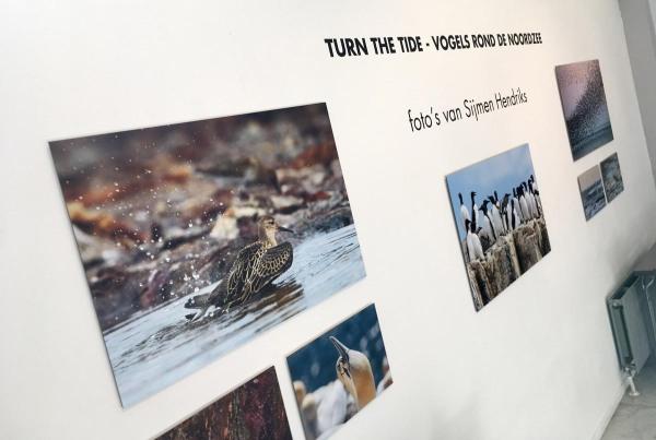 Fotoexpositie 'Turn the tide'  in het Natuurhistorisch Museum Rotterdam